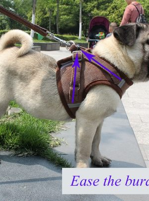 Pet Harness with Leash Adjustable Breathable Collar