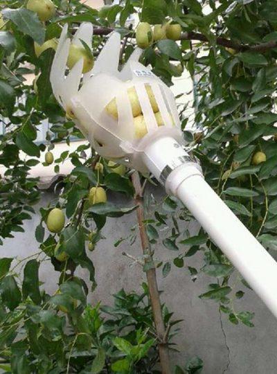 Portable Fruit Picker Gardening Tool