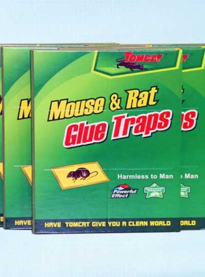 Sticky Mouse Rat Traps Board